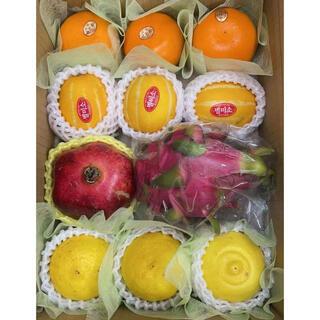 果物詰め合わせ 韓国産メロン せとか ザクロ石榴……(フルーツ)