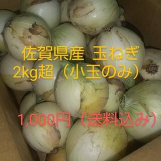 佐賀県産  早生玉ねぎ 2キロ超(野菜)