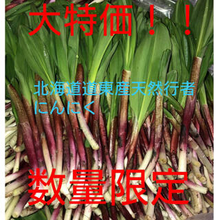 北海道産天然物行者にんにく(野菜)