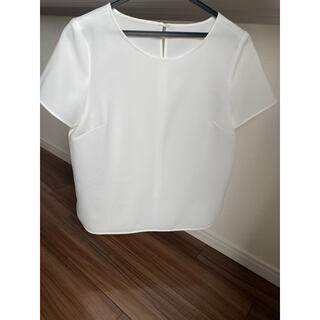 プラステ(PLST)のプラステPLAST カットソーブラウスTシャツ美品セオリーtheory(シャツ/ブラウス(半袖/袖なし))