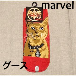 マーベル(MARVEL)のキャプテンマーベル  グース 靴下 猫(ソックス)