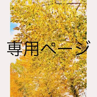 デコピン様専用(ブローチ/コサージュ)