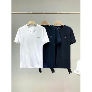 アークテリクス(ARC'TERYX)のArcteryx B-1017  一箱に二枚(Tシャツ/カットソー(半袖/袖なし))