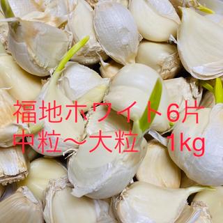 【栄養満点】青森県産 福地ホワイト6片中粒〜大粒 発芽生ニンニク1キロ(野菜)