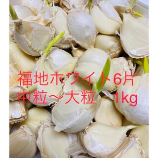 【栄養満点】青森県産 福地ホワイト6片中粒〜大粒 発芽生ニンニク1kg(野菜)