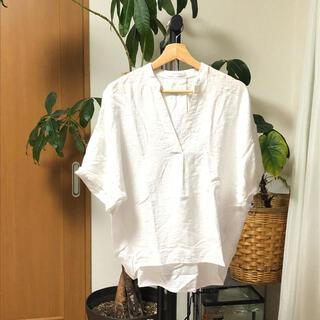 バックナンバー(BACK NUMBER)のBACK NAMBER バックナンバー 白シャツ(シャツ/ブラウス(長袖/七分))