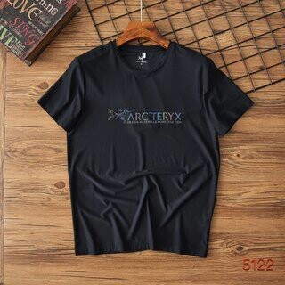 アークテリクス(ARC'TERYX)のArcteryx B-1025(Tシャツ/カットソー(半袖/袖なし))