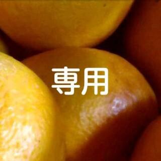 ぷくぷくさん専用 10キロ(フルーツ)