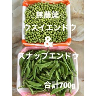 ⭐︎無農薬⭐︎ウスイエンドウ&スナップエンドウ(野菜)