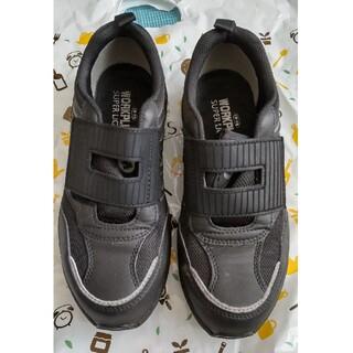 ミドリアンゼン(ミドリ安全)の作業用靴 【ミドリ安全靴】(その他)