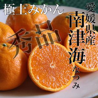 あま〜〜い!!極上みかん【南津海(なつみ)】青秀品 3Lサイズ 5kg(フルーツ)