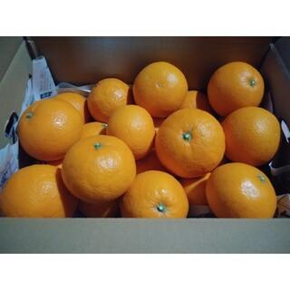 愛媛県西宇和産 清見オレンジ約10㎏(フルーツ)