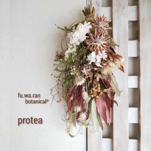 専用*プロテア&スターコーン  ドライフラワースワッグ ハンドメイドのフラワー/ガーデン(ドライフラワー)の商品写真