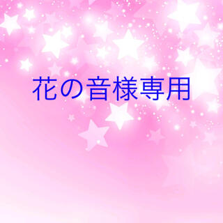 花の音様専用 スターフラワーミニ(ドライフラワー)