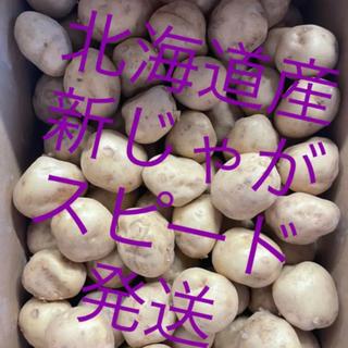【数量限定】北海道産 北広島産 じゃがいも 男爵 大特価 サイズ2S 約10kg(野菜)