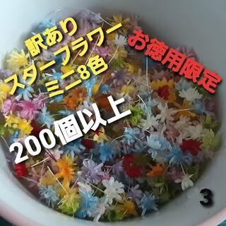 訳あり3スターフラワーミニ8色 200個以上(ドライフラワー)