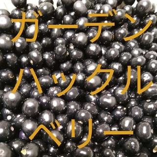 ガーデンハックルベリーの種 プランター可能(野菜)