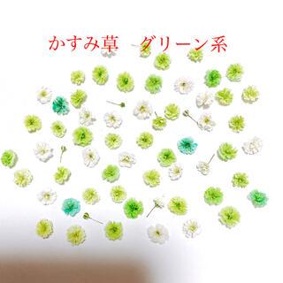 かすみ草 ドライフラワー 100輪(各種パーツ)