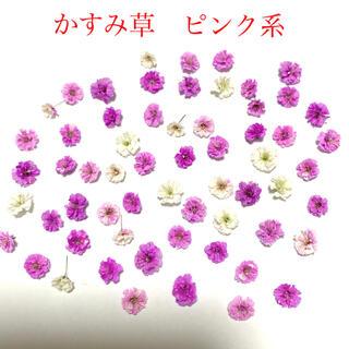 かすみ草 ドライフラワー ピンク系 60輪(各種パーツ)