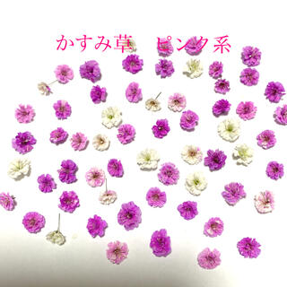 かすみ草 ドライフラワー ピンク系 100輪(各種パーツ)