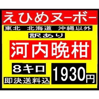②えひめヌーボー 訳あり 河内晩柑 8キロ(フルーツ)