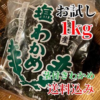 岩手県産 塩蔵わかめ 500g2袋 茎付きわかめ 湯通し (野菜)