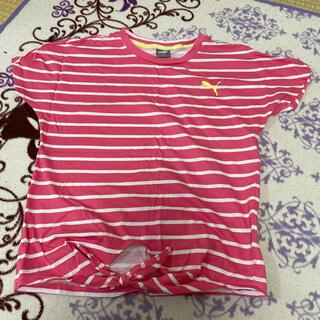 プーマ(PUMA)のPUMA 150cm(Tシャツ/カットソー)