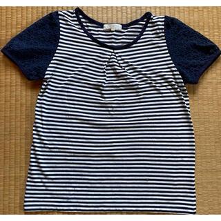 グローブ(grove)のボーダーTシャツ(Tシャツ/カットソー(半袖/袖なし))