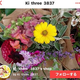 配送料 鍵盤ハーモニカ(ハーモニカ/ブルースハープ)