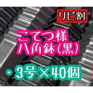 こてつ様 八角鉢(その他)