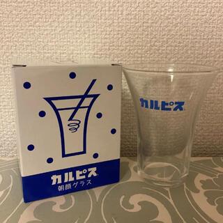 トウヨウササキガラス(東洋佐々木ガラス)の【新品 非売品】カルピス朝顔グラス(グラス/カップ)