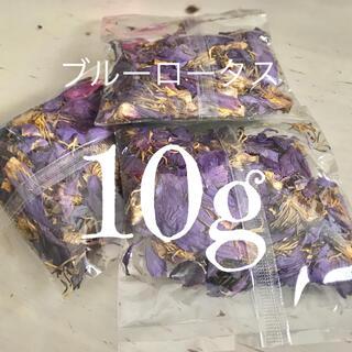 【フレッシュ!安心安全】ブルーロータス 10g スリランカ産 オーガニック(ドライフラワー)