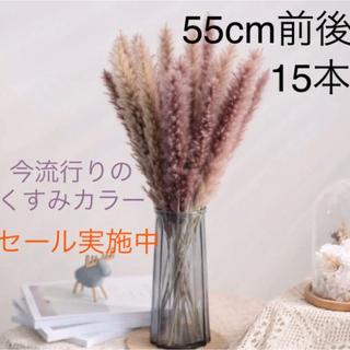 パンパスグラス テールリード 15本 韓国 くすみカラー スワッグ インテリア(ドライフラワー)