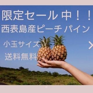 24時間限定セール中!!西表島産小玉ピーチパイン約5㎏(10~13玉)(フルーツ)