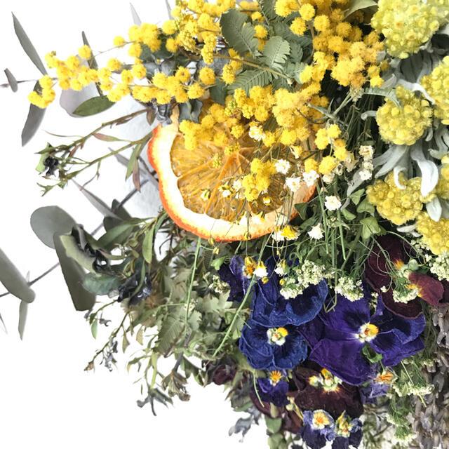 yellow×purple ミモザ×パンジーのドライフラワースワッグ ハンドメイドのフラワー/ガーデン(ドライフラワー)の商品写真