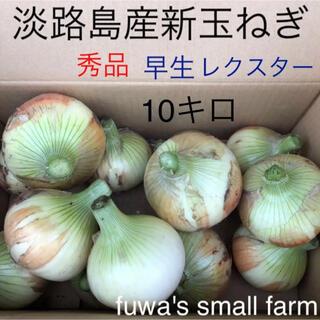 ☆淡路島産新玉ねぎ☆早生 レクスター 10キロ(野菜)