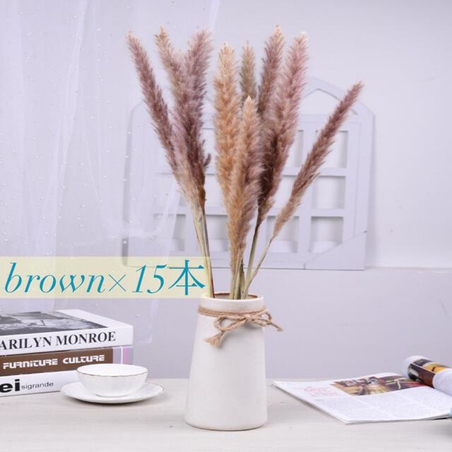 パンパスグラス 茶色 15本セットドライフラワー テールリード ハンドメイドのフラワー/ガーデン(ドライフラワー)の商品写真