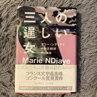 三人の逞しい女(文学/小説)
