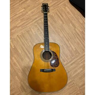 モルガン(MORGAN)のMorgan Monroe M20 専用品(アコースティックギター)