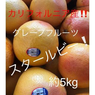 カリフォルニア産 グレープフルーツ スタールビー 約5kg(フルーツ)