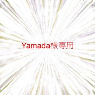 Yamada様専用(エレキギター)