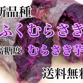 新品種‼️高糖度むらさき芋【ふくむらさき】コンパクトボックス1.2キロ超送料無料(野菜)