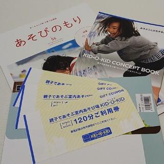 ボーネルンド(BorneLund)のキドキド 120分 利用券 3枚 冊子付き チケット (遊園地/テーマパーク)