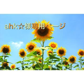 ahk様専用ページ(マグホルダー)(ベビーホルダー)