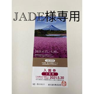 JADE様専用(遊園地/テーマパーク)