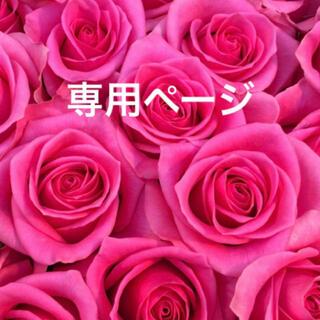 ☆HONEY's Shop☆様 専用ページ(ドライフラワー)