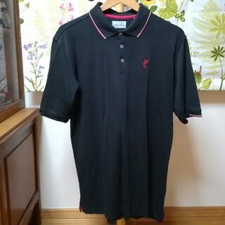 アシュワース(Ashworth)の✨ASHWORTH アシュワース 黒色ポロシャツ3Lサイズ(ポロシャツ)