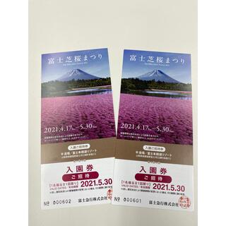 富士芝桜まつり2021 チケット 入場券(遊園地/テーマパーク)