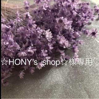 ☆HONY's Shop☆様専用♡ドライフラワー 紫、青2点(ドライフラワー)
