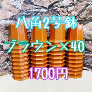 八角鉢 ◎40個◎ ブラウン2号 2寸 プラ鉢 ミニ鉢 シャトル(プランター)